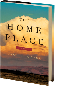 Home-Place 3D cover